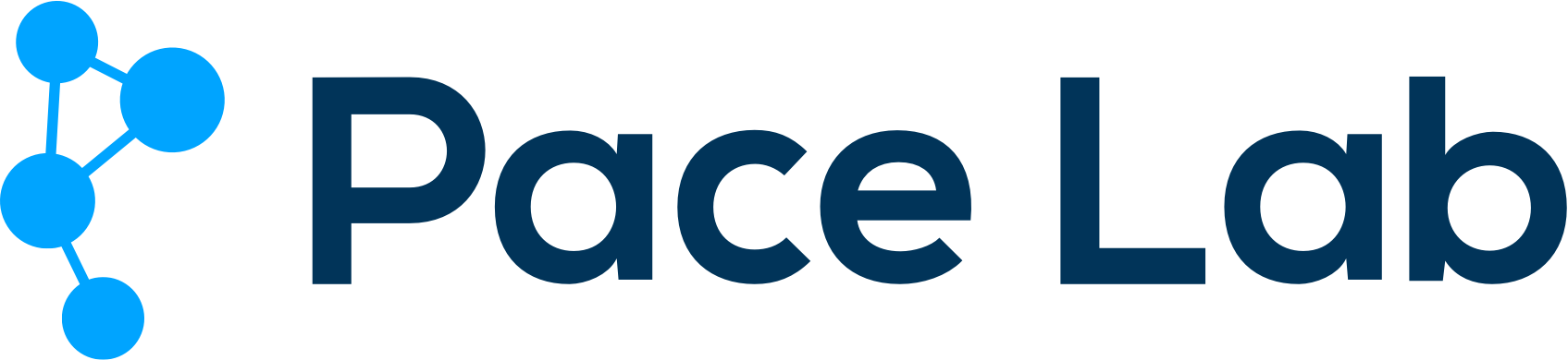 Pace Lab - Online Marketing traject